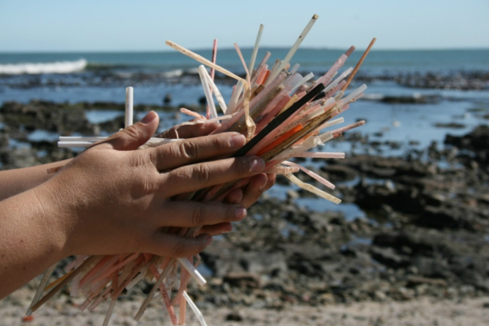 beach-straws.jpg