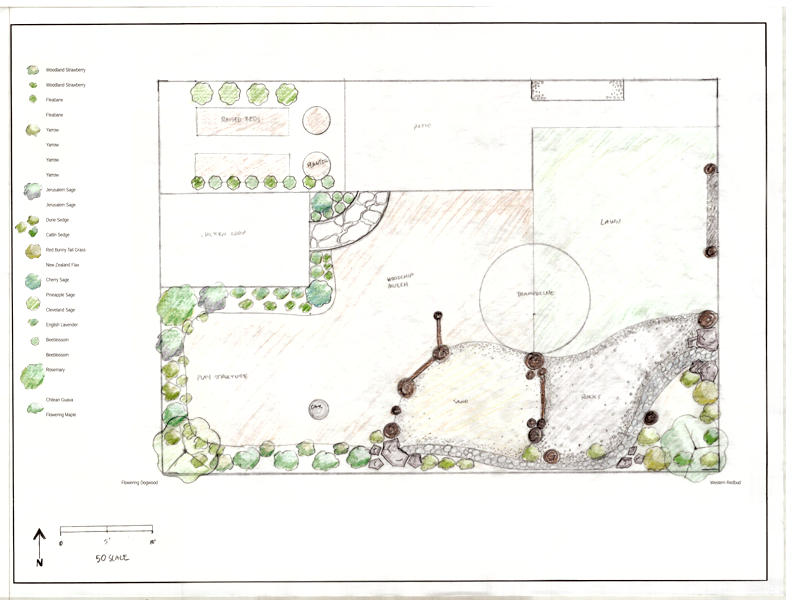 A playgarden / backyard redesign for an in-home daycare facility. Santa Rosa, 2018
