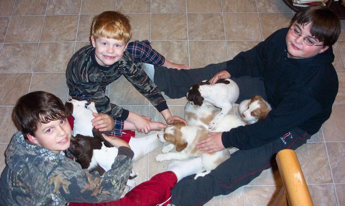 puppysocialization.jpg