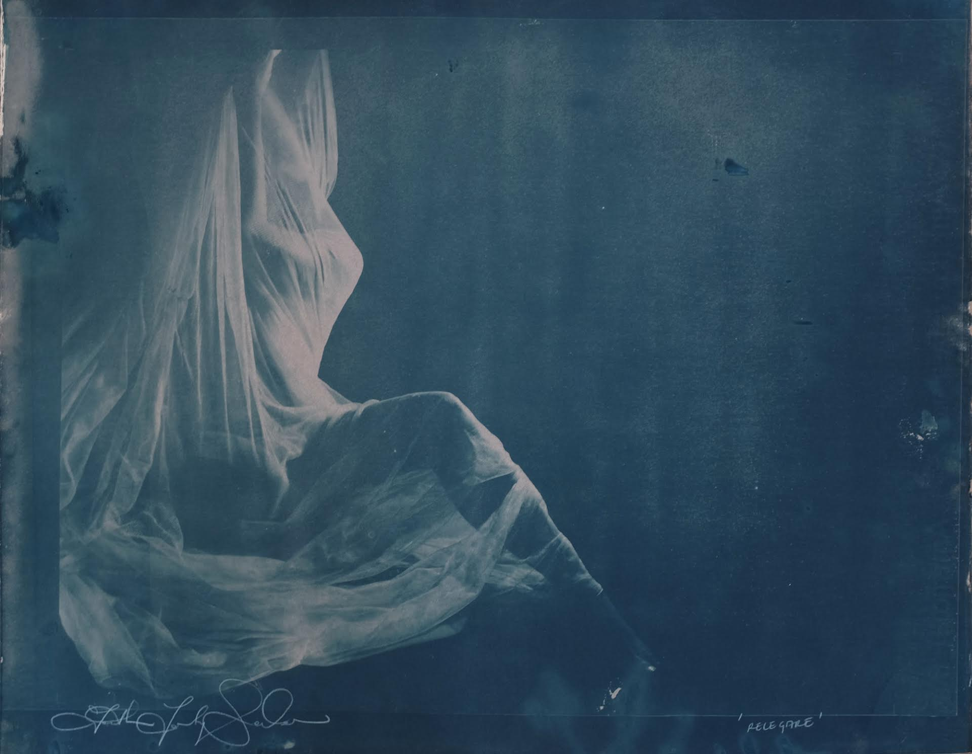 FAITH XLVII  Relegare , 2016  Cyanotype. Signed and titled on the lower margin. Edition of 5  26 x 34 in. (framed)