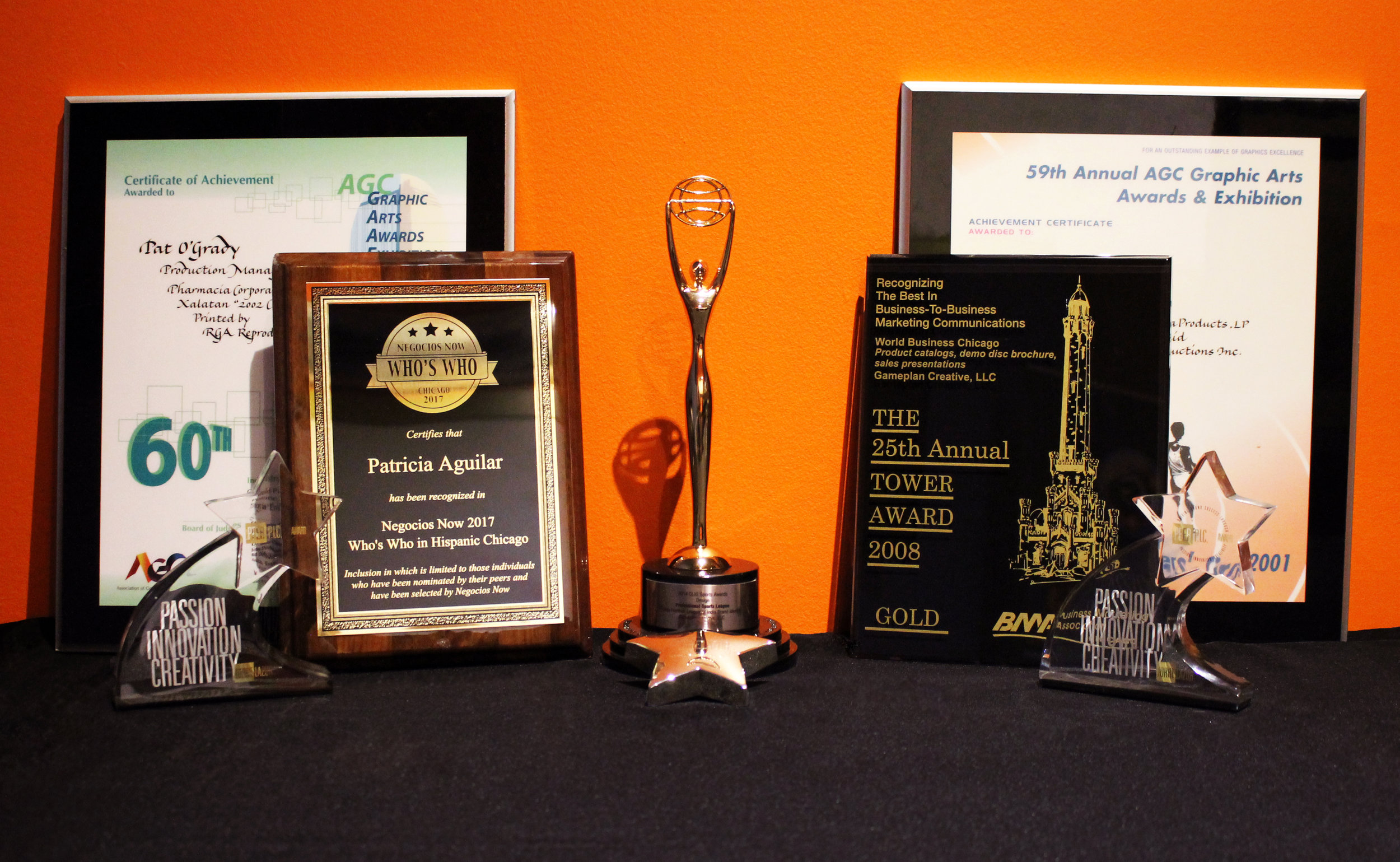 Patricia Aguilar Awards