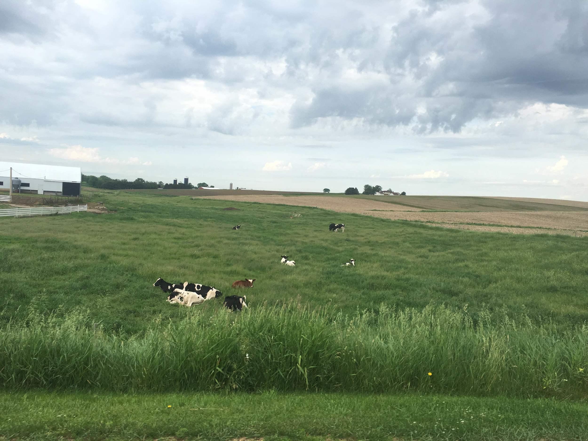 22 Prairie Du Chien 02.jpeg