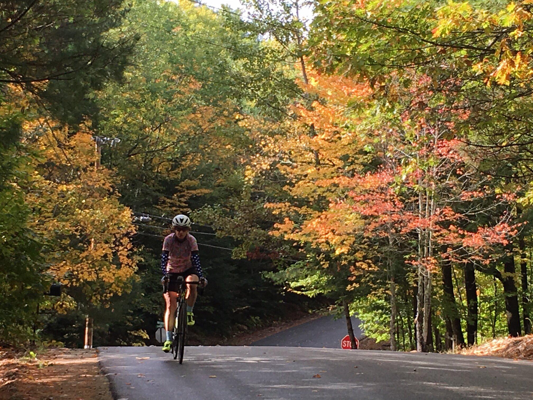 Maine Foliage Tour Day 2
