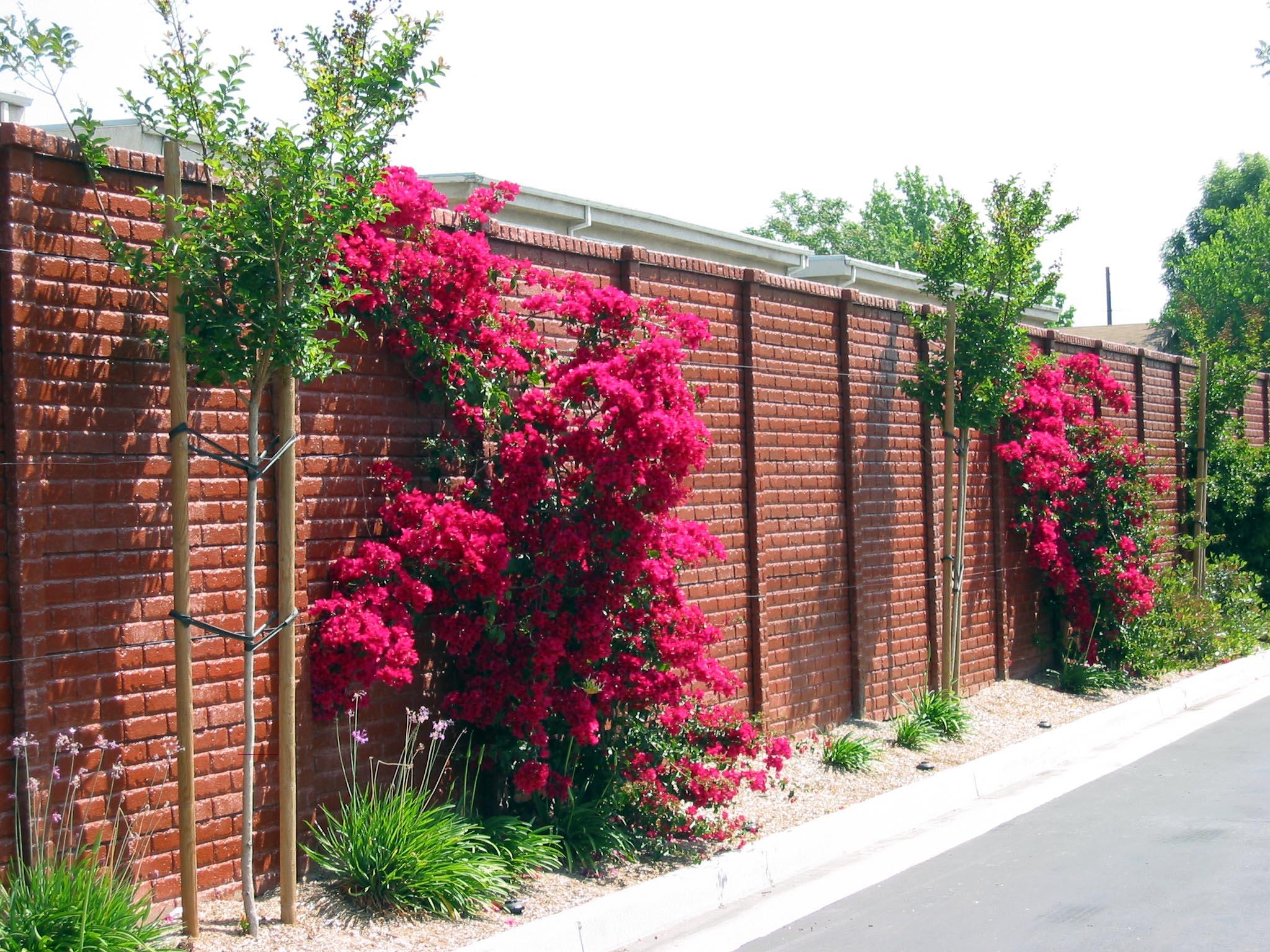 OldBrick Concrete Fence.JPG