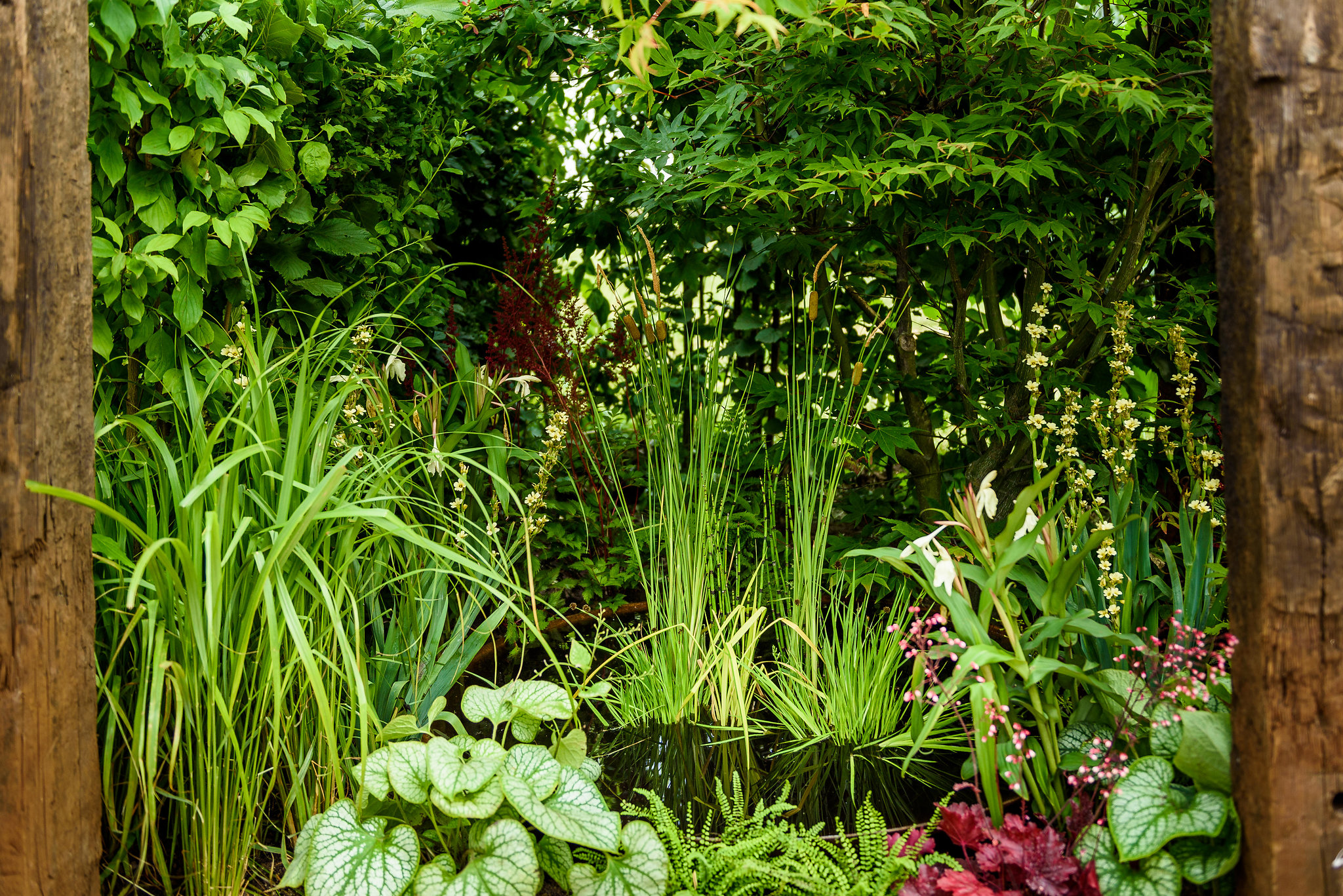 PC-GardenersWorld2018-040.jpg