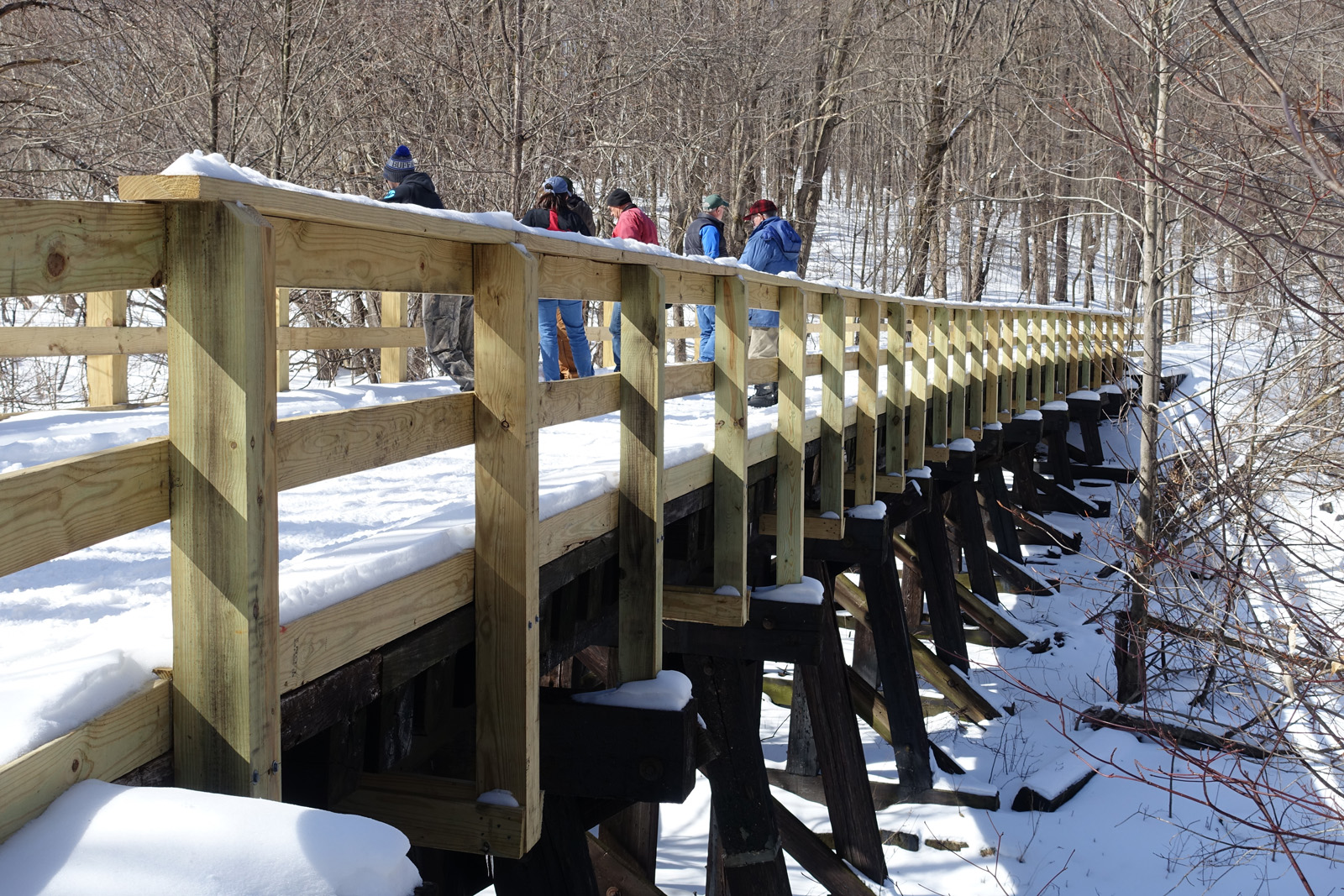 on snow covered trestle.jpg