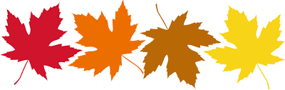 Ever wonder why leaves change colors in the fall?  Click on the leaves to find out