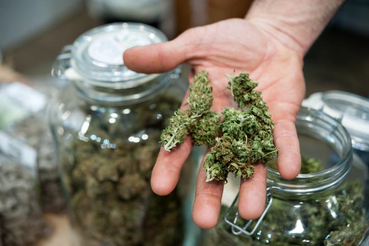 Investing in Cannabis - Brandon David