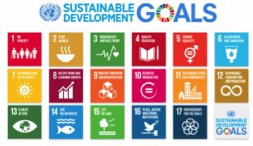 UN Sustainability Goals.jpg