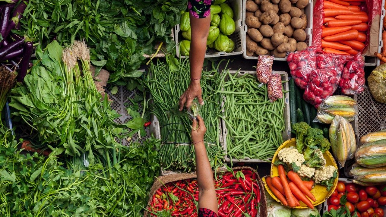 Pomeroon Guyana Sustainability