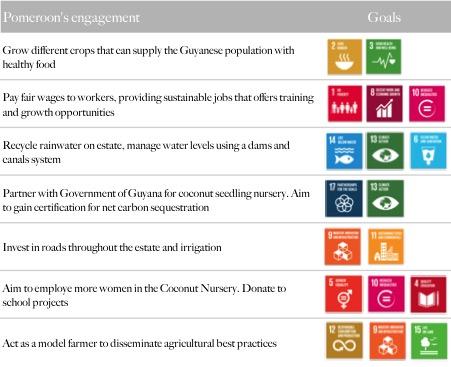 Pomeroon UN Sustainability Coconuts Goals