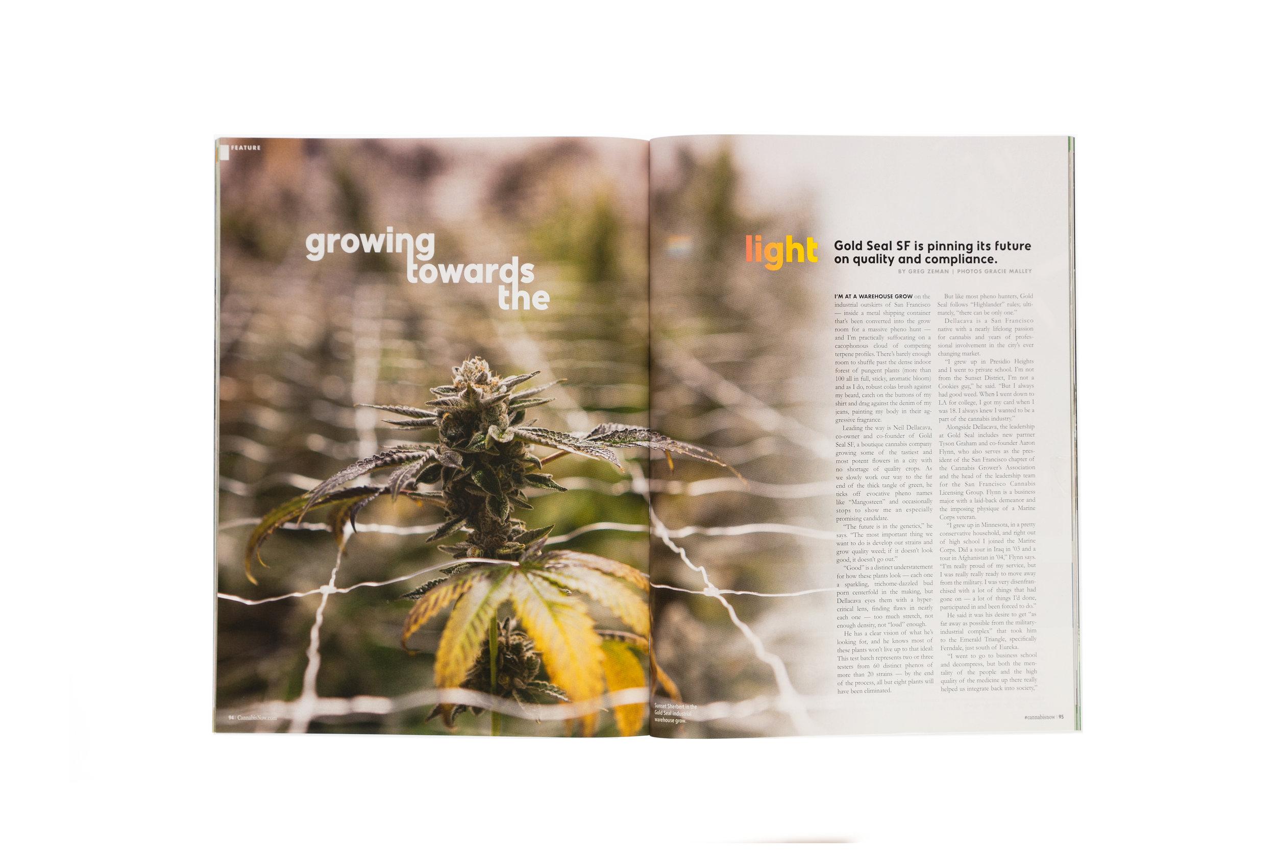 Cannabis-Now-GoldSeal-1pg-5K.jpg