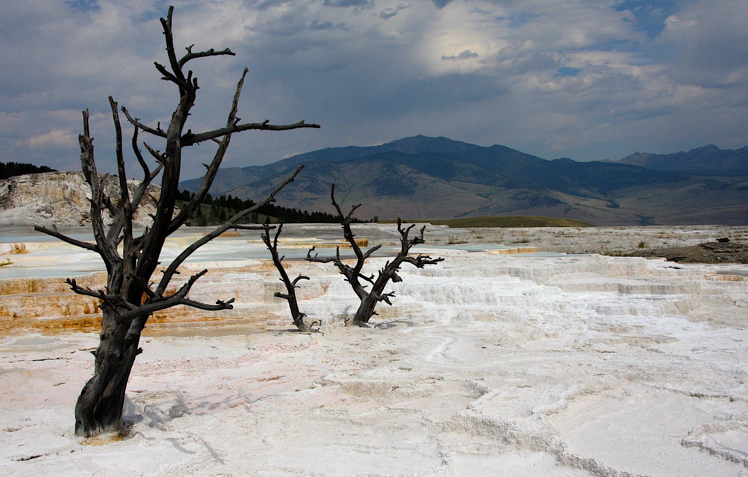 Mammoth Basin