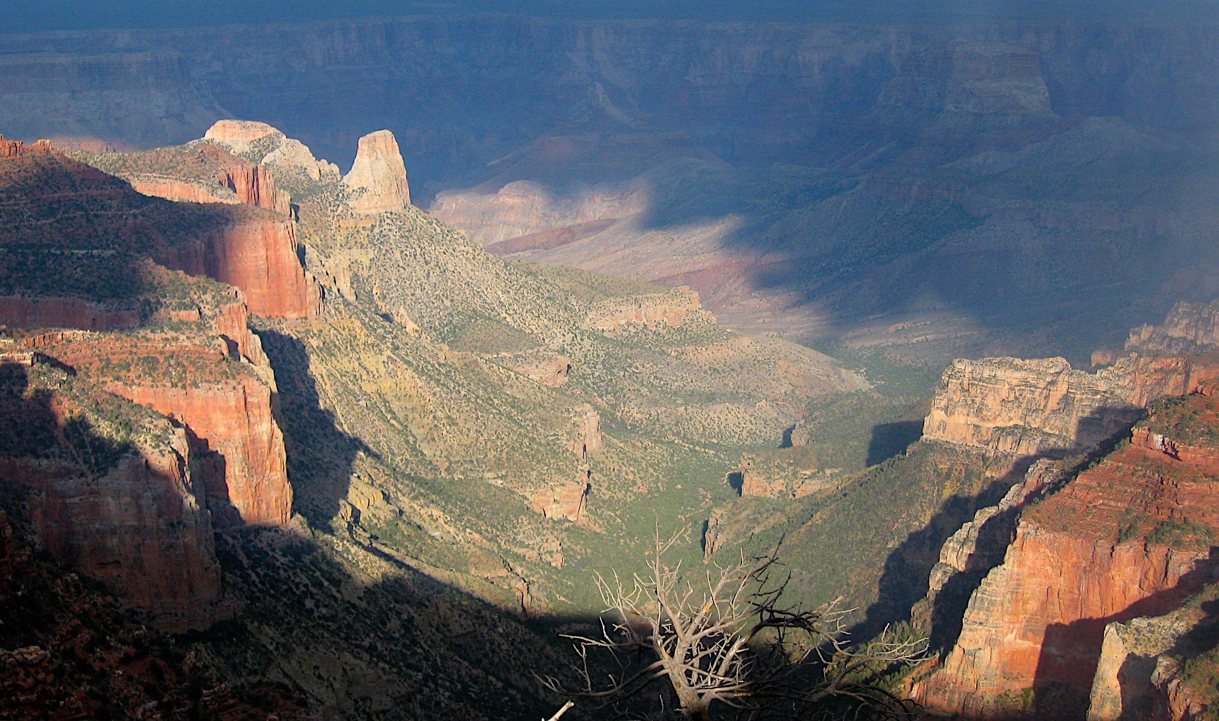 The Grand Canyon North Rim