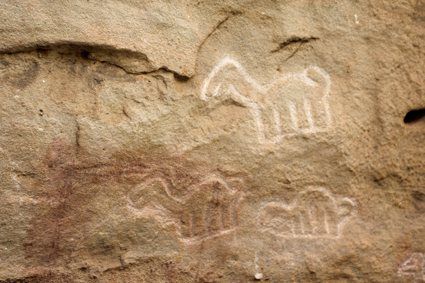 Rock art from the Bronze Age at the Pitaya petroglyphs near Chachapoyas.
