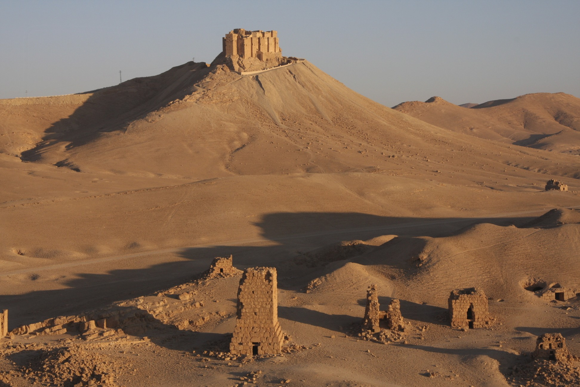 The citadel of Palmyra