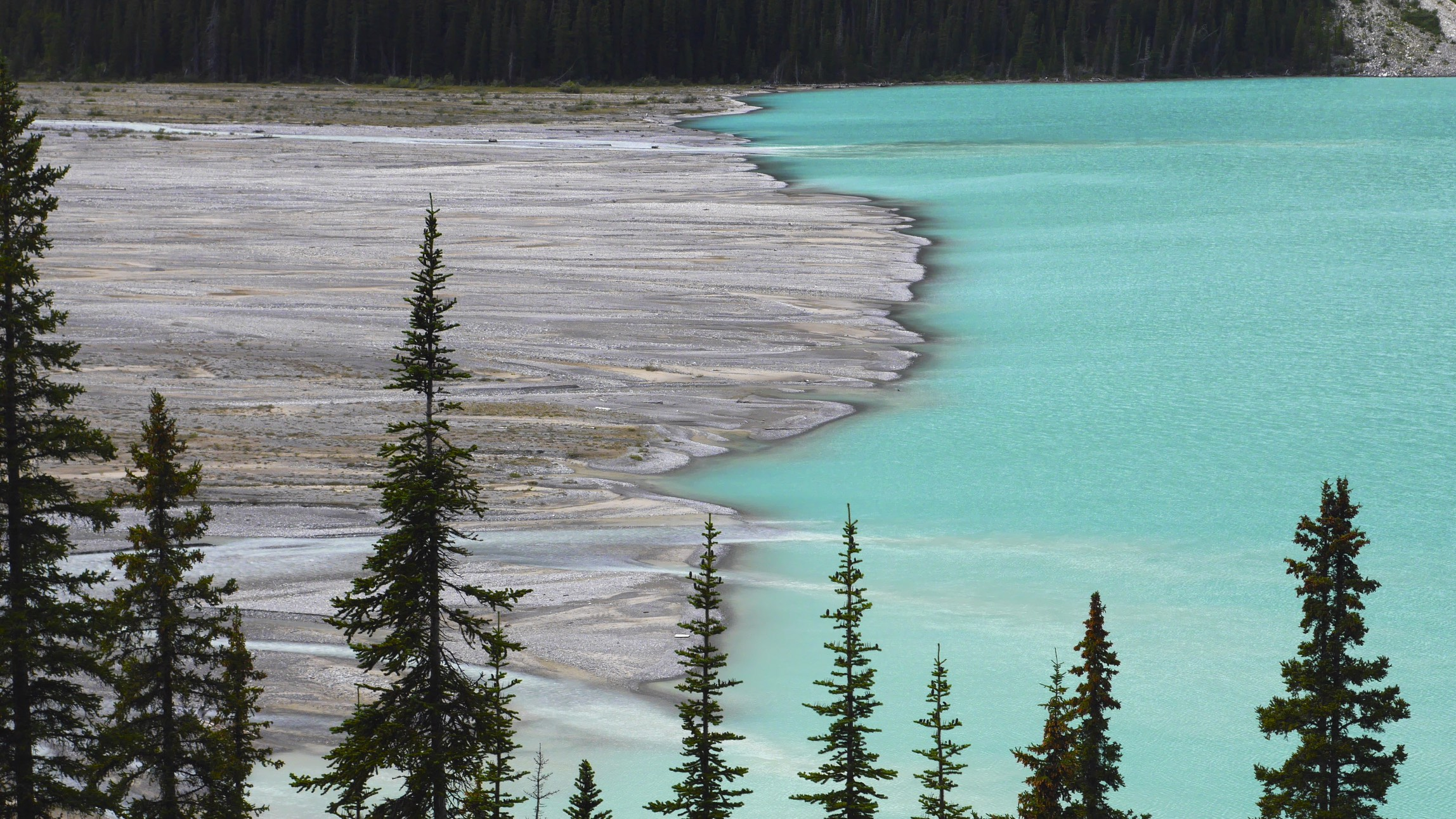 The Peyto Lake