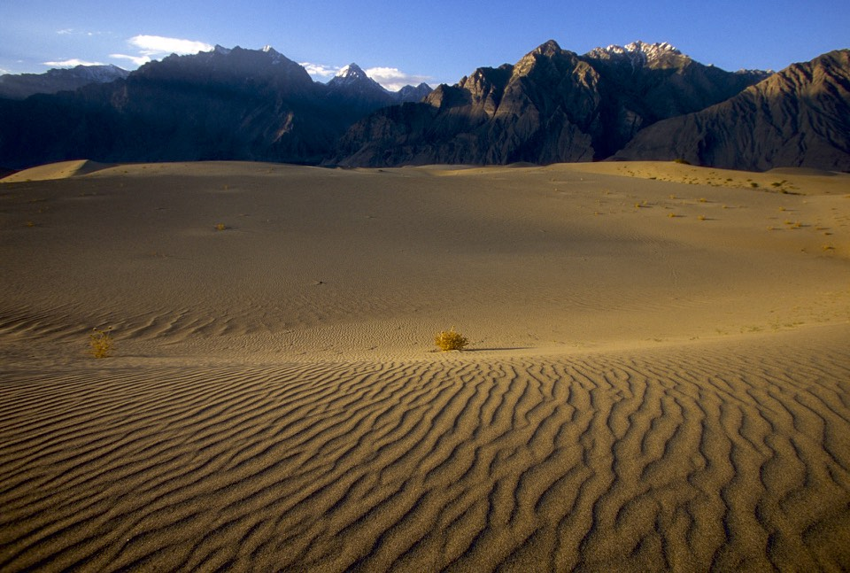 The sand dunes of the Indus River