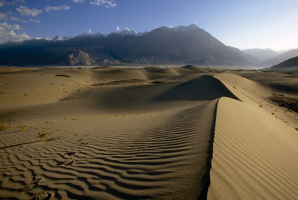 Sand dunes of the Indus River