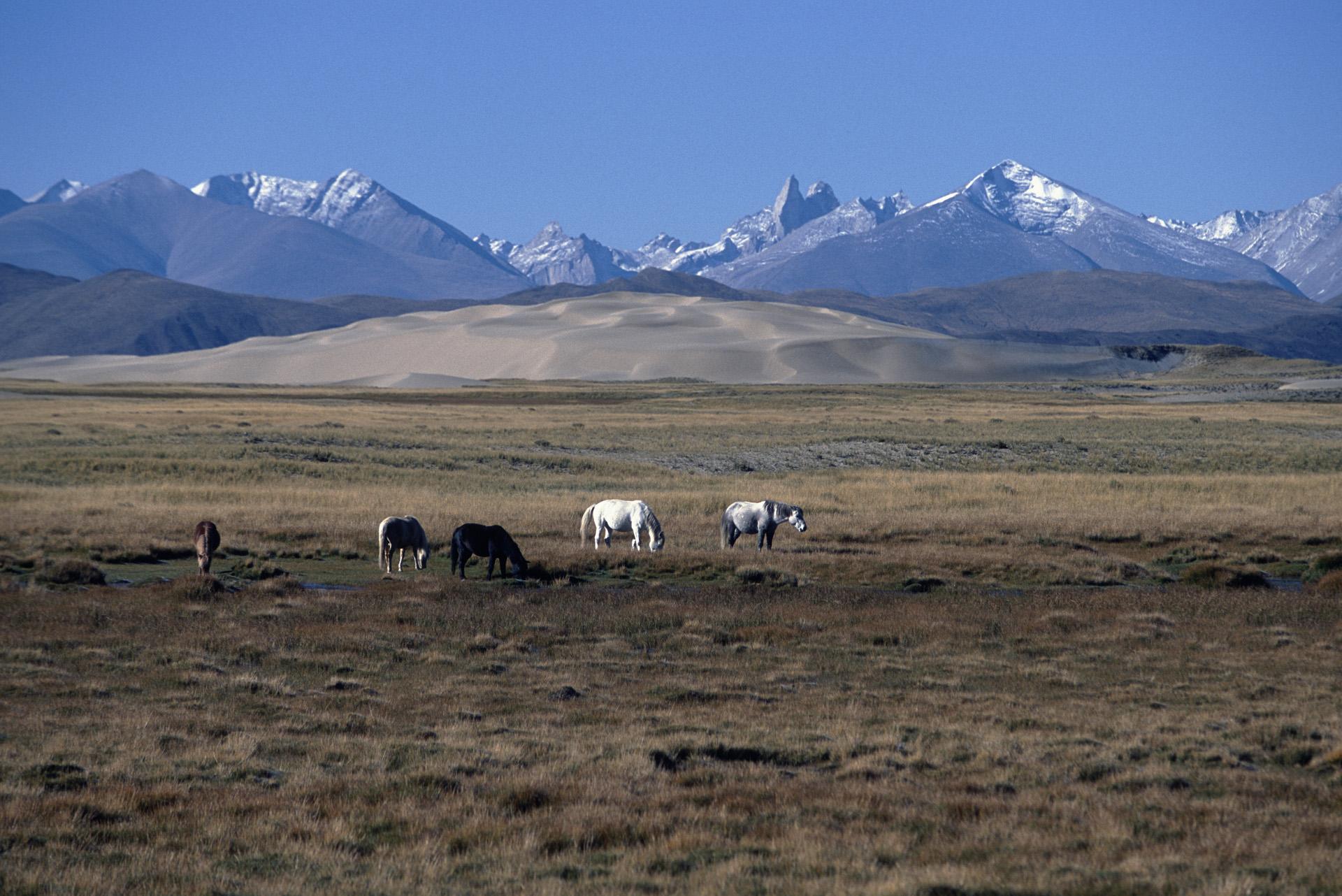 The Himalaya from Tibet