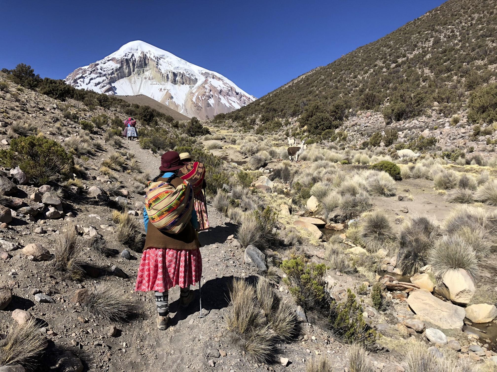 The trail to the BC of Sajama. I met Cholitas Escaladoras who were climbing Sajama.