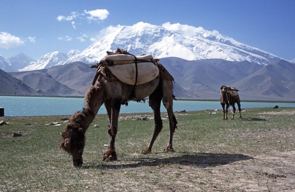 Karakul Lake and Muztagh Ata