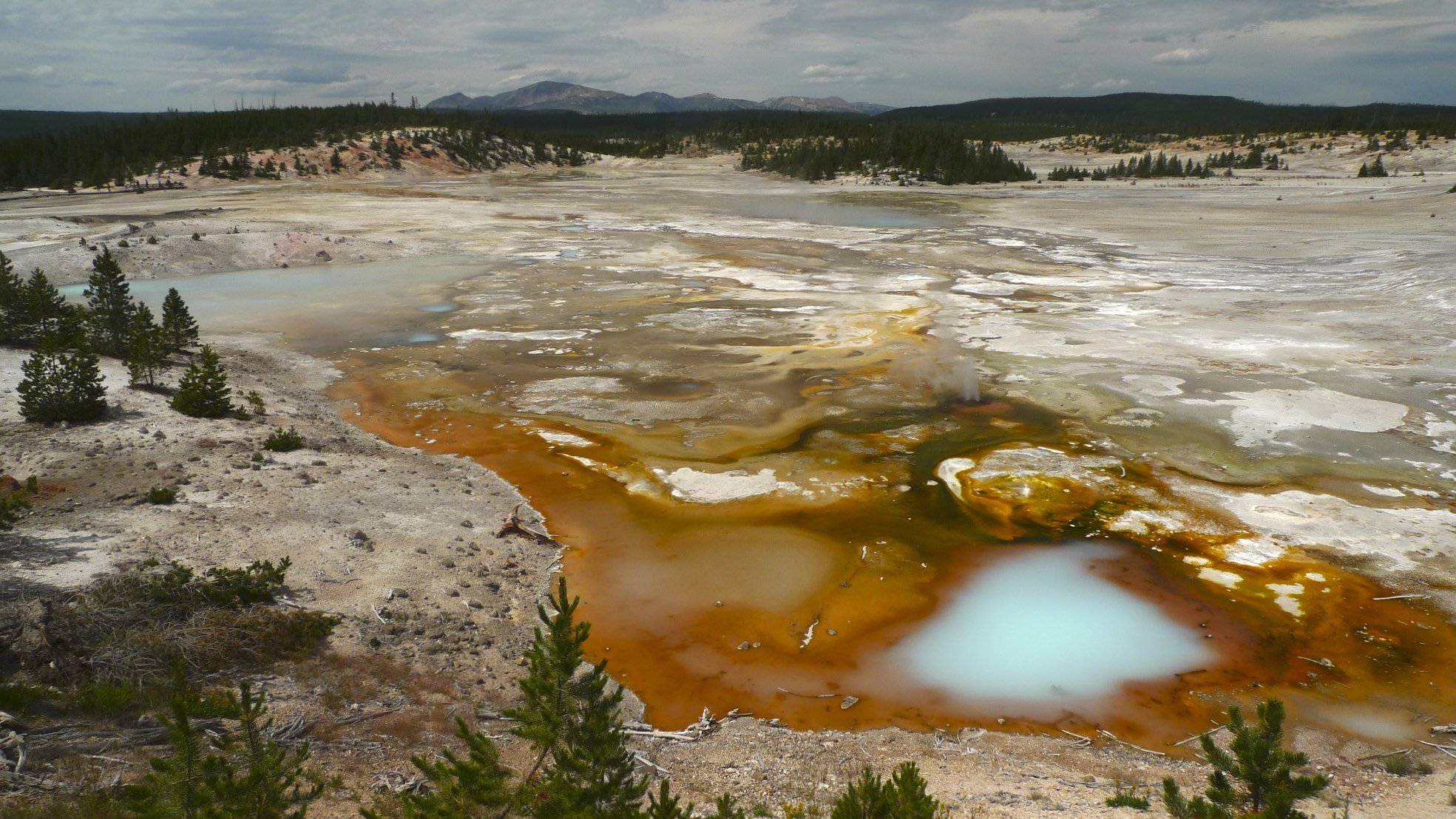Norris Geyser Basin, the most active volcanic area in the park.