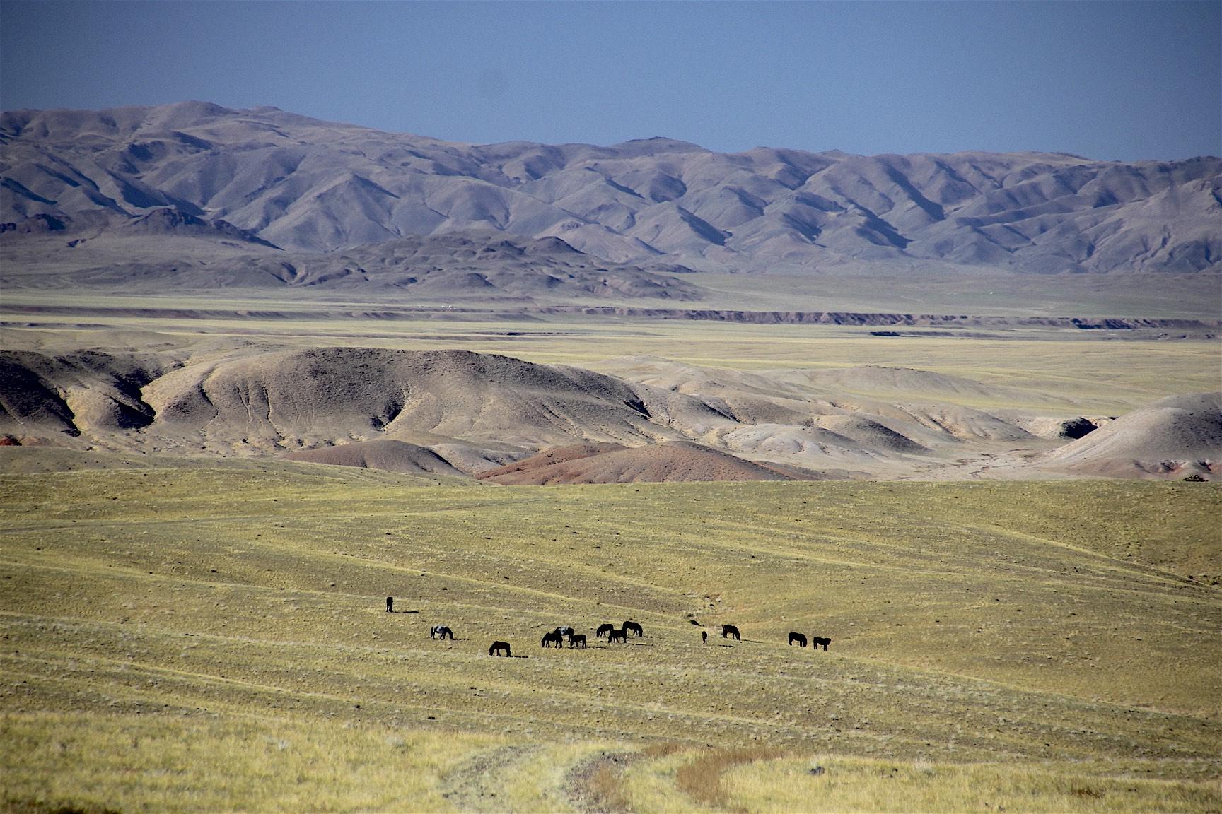 Approaching the Gobi
