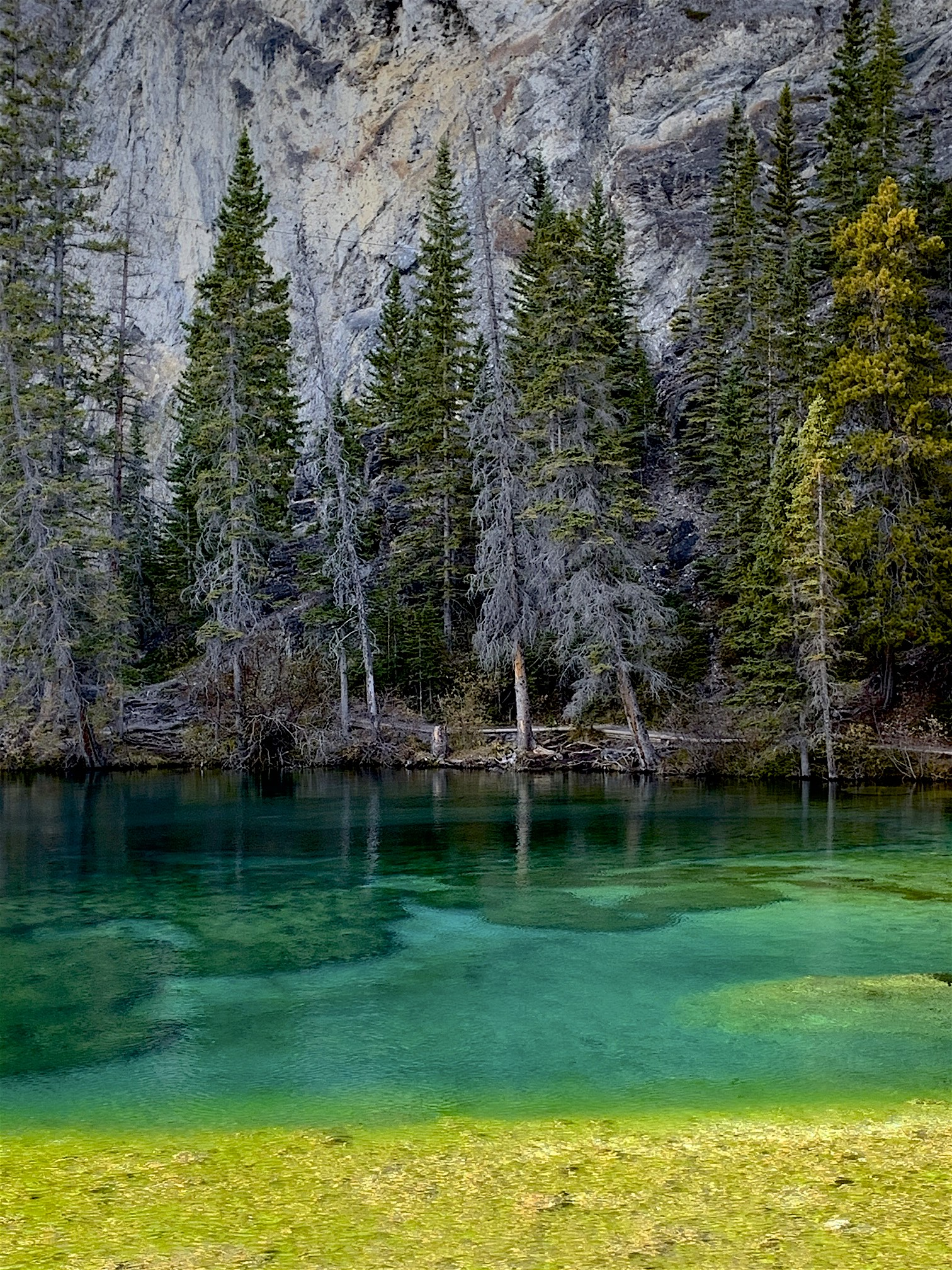 The beautiful Grassi Lakes in Canmore