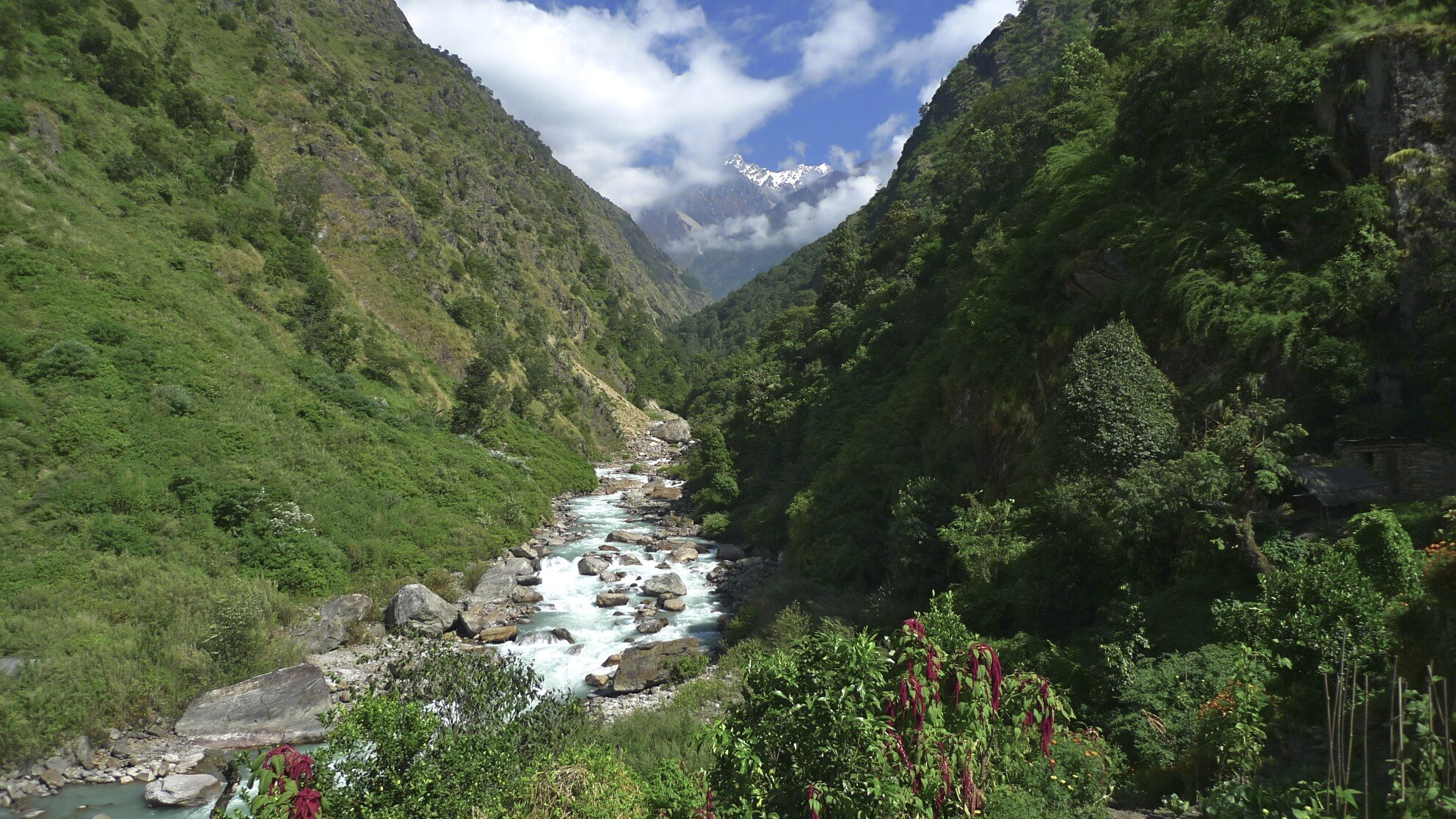 The Langtang Valley