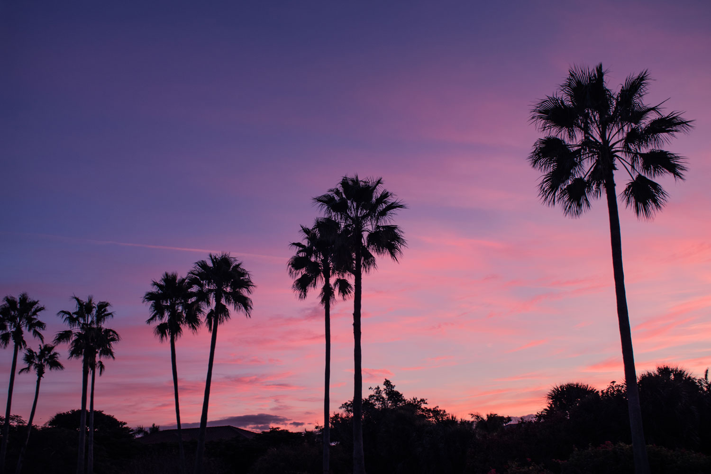 John-Ringling-Pink-Sunrise.jpg
