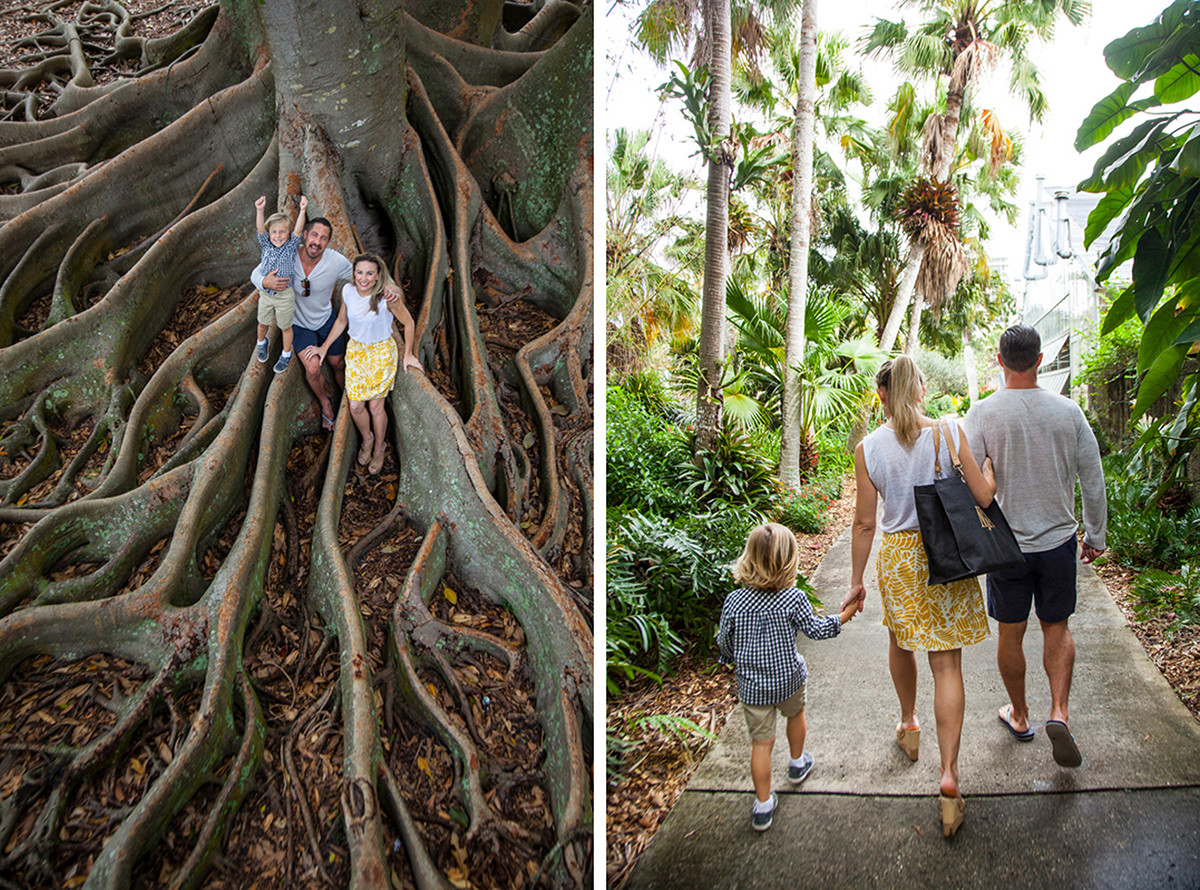 Selby Gardens