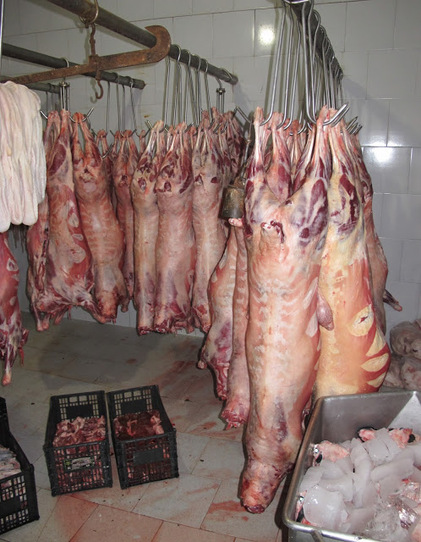 Prepared sheep are briefly hung to cure