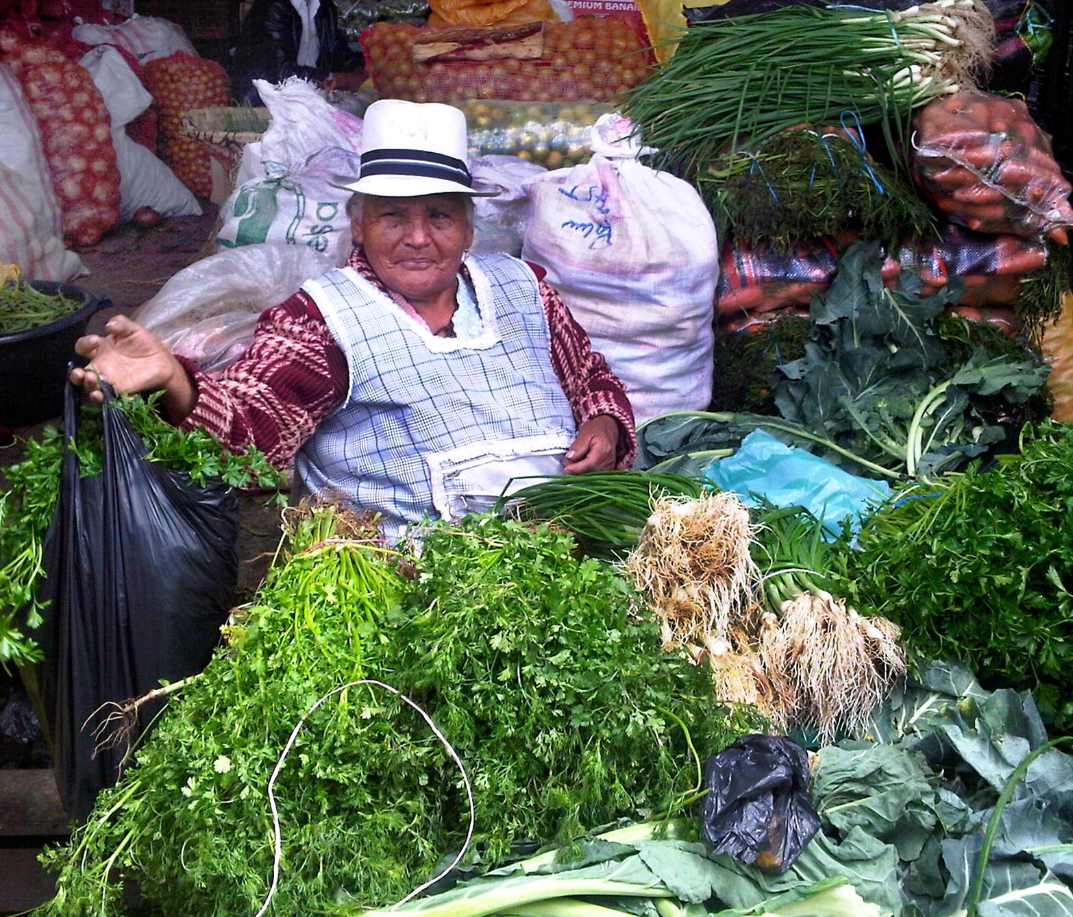 herb vendor, Cuenca