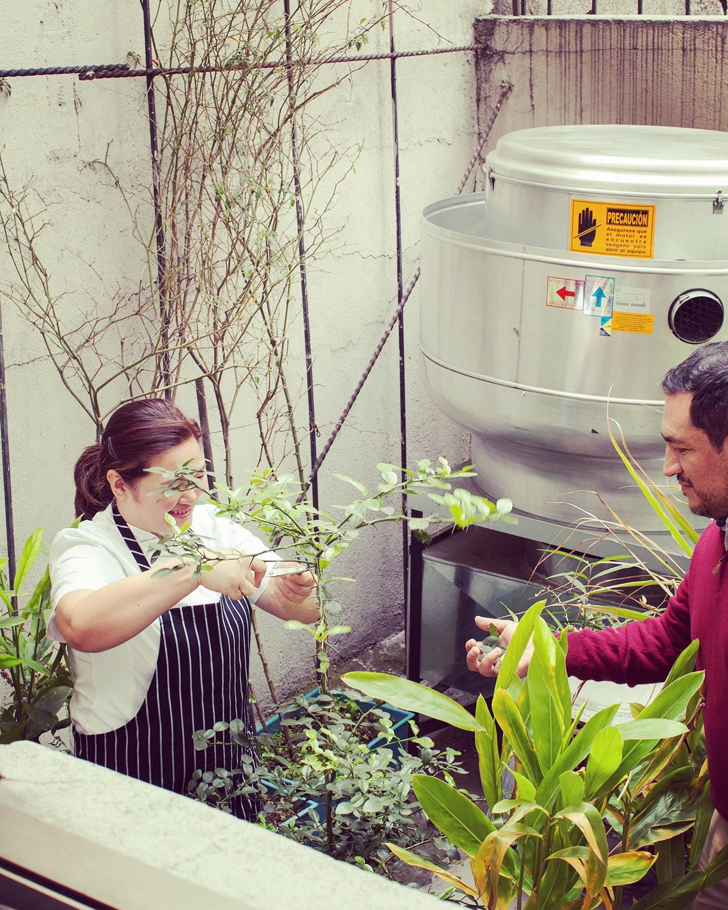 Ana & Eleazar and Kaffir lime. Photo courtesy Galanga
