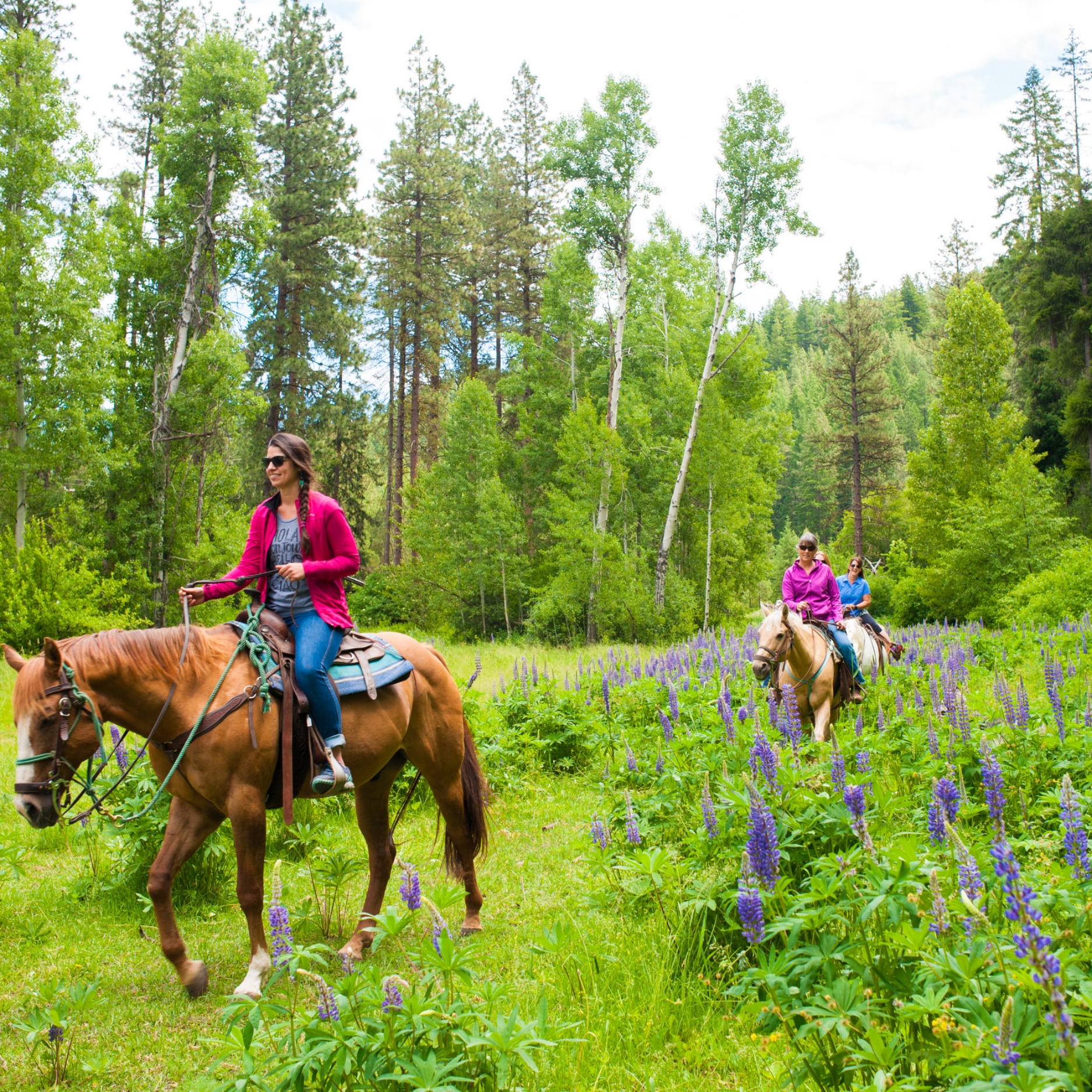 Group riding 3 hour meadow to mountain ride with Wild at Heart Horse Rides.