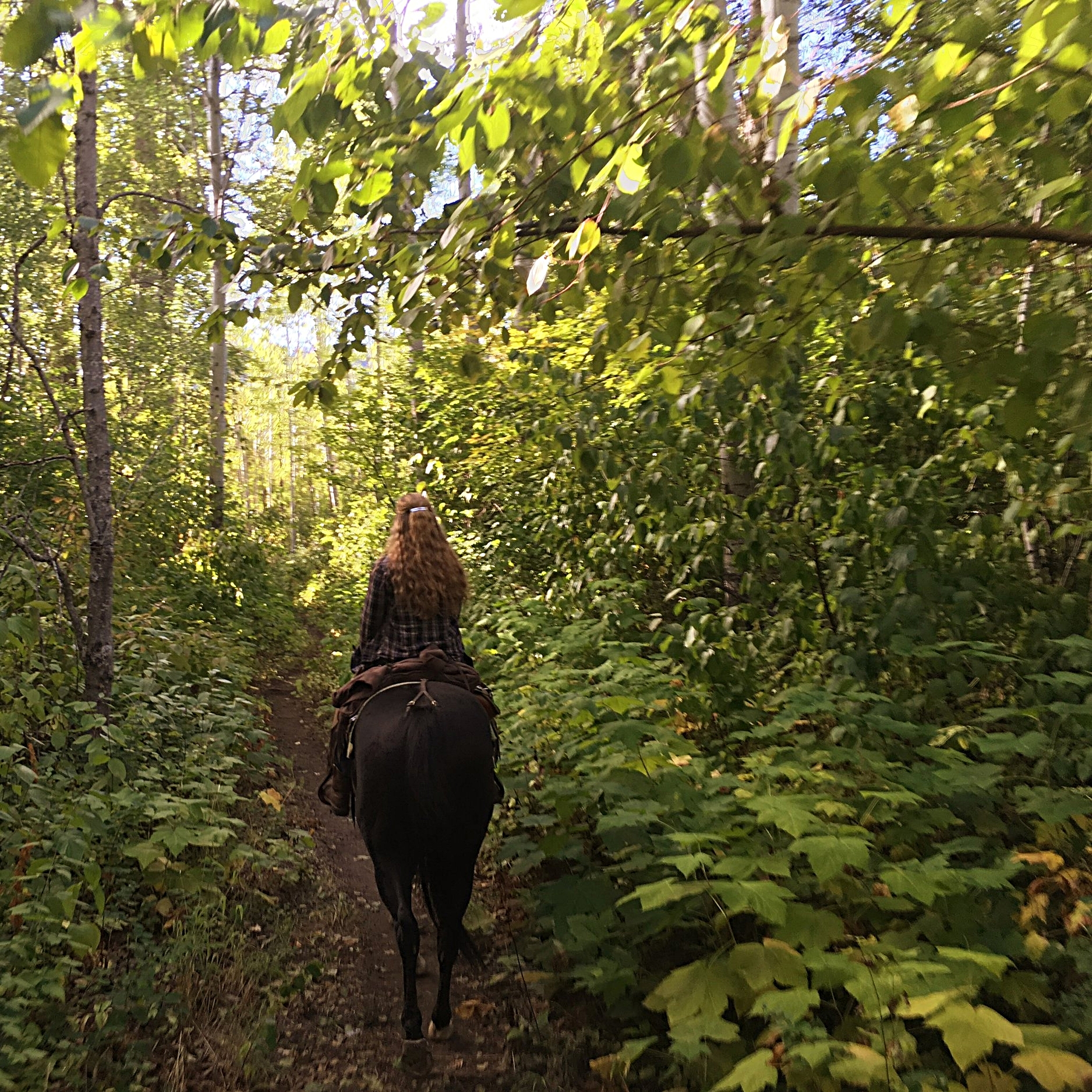 Girl horseback riding on the 1.5 hour beaver creek ride with Wild At Heart Horse Rides.