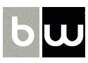 Bitwise - BW Logo.png