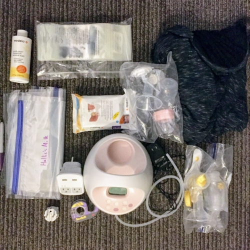 How to Pump Breastmilk while Traveling Internationally Materials List   Project Managing Mama