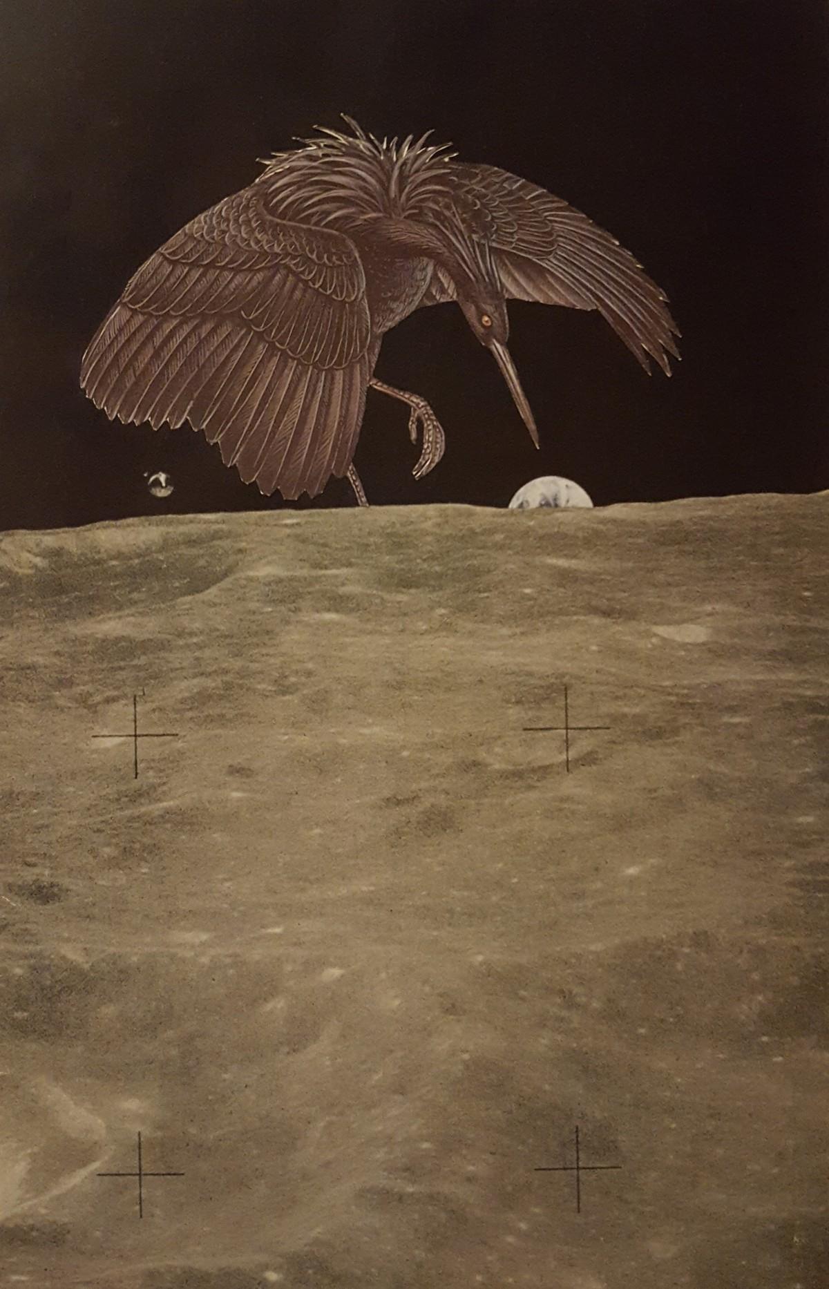 collage-bird-moon-earth.jpg