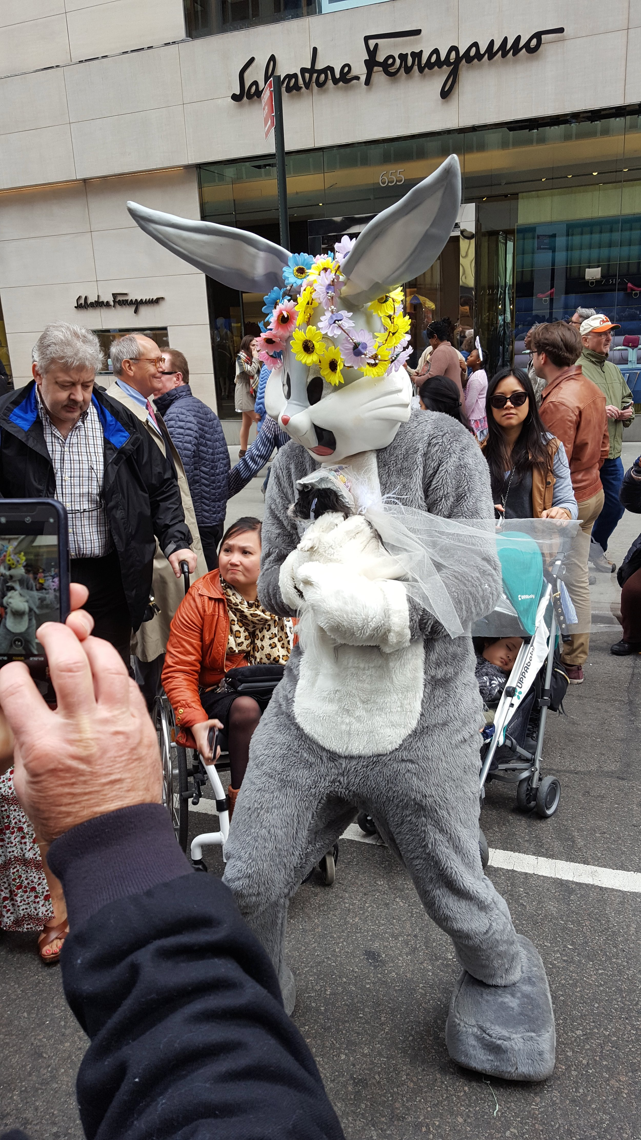 Bugs at Easter with other dog