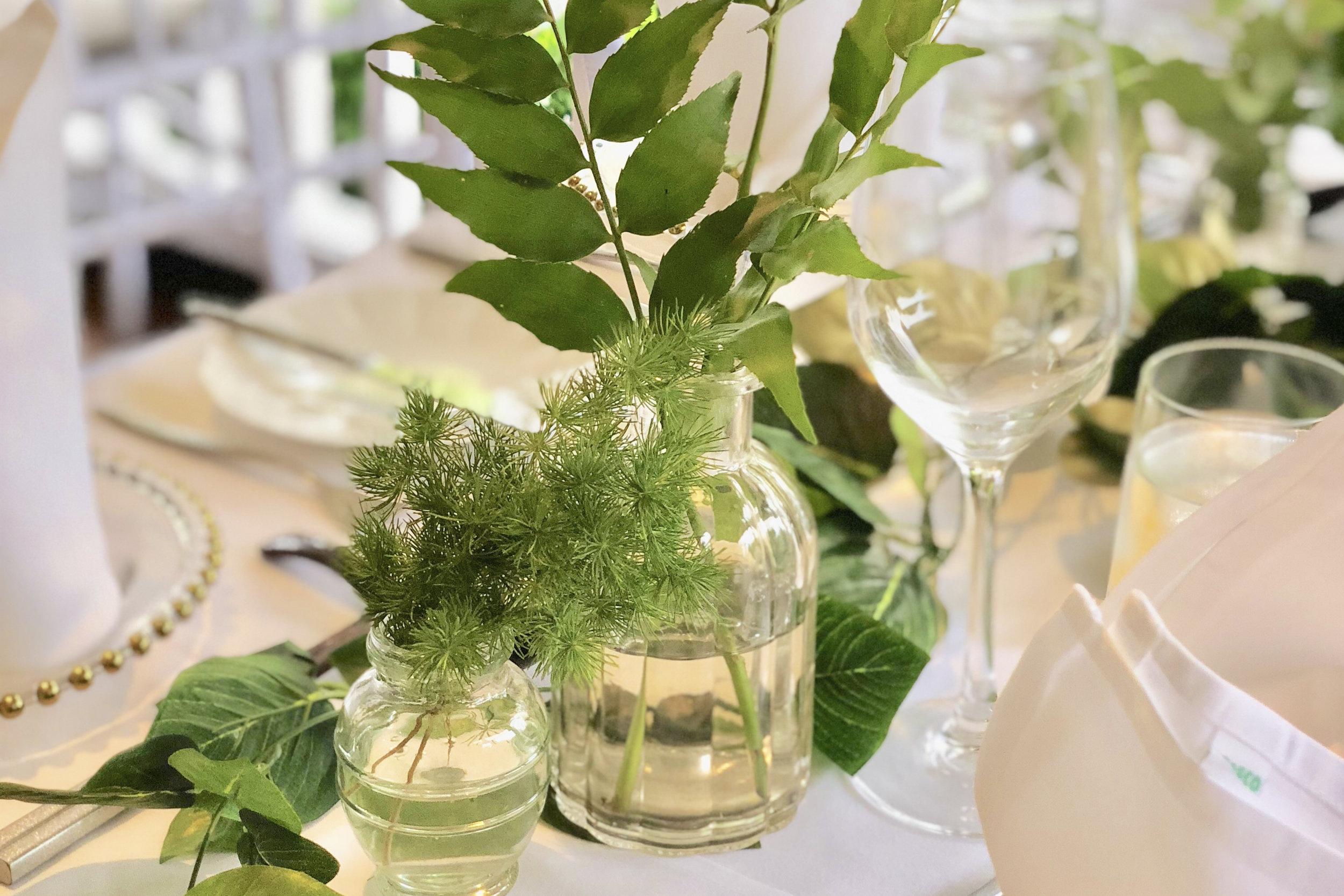 BOTANICAlfoliage -