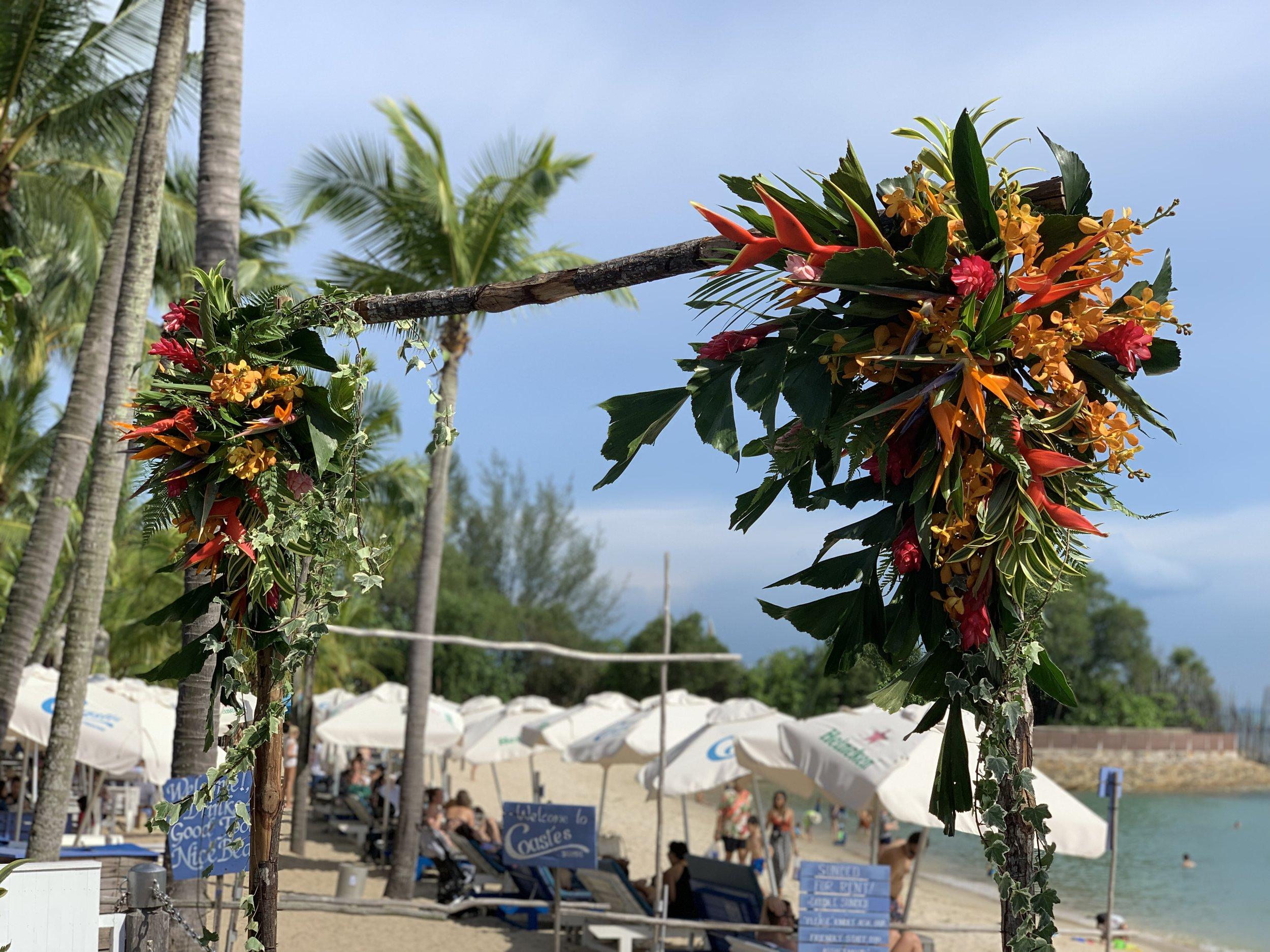 tropicalparadise -