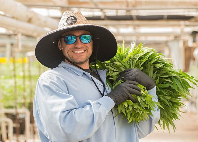 Meet Vince. Vince is our clone wizard here at Headwaters. He is responsible for maintaining our impressive library of genetic sand he takes care of the mother plants and babies with a tender loving hand. He is also a crazy snowboarder and you can find him shredding in the mountains on his days off. We love you, Vince!