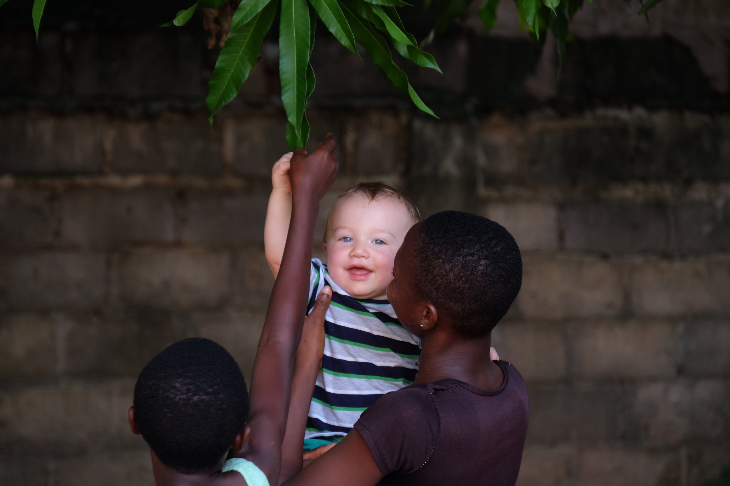 Truly, it was not my intention to take so many pictures of Lewis, but the girls were determined to carry him everywhere and he ended up in a LOT of the photos. He was doted on non-stop and is missing his older sisters now that we are back home ;) Here, Lucky and Sarah Jr. help him pick a mango.