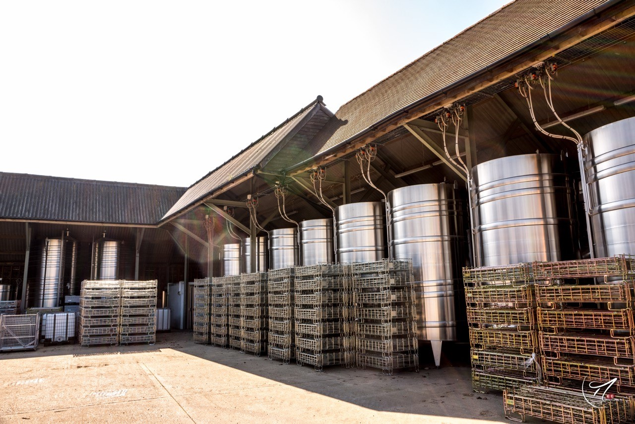9. Ageing - The wines may be aged for 8 or 9 months in barrel or tank to gain extra flavour from the dead yeast cell or lees.