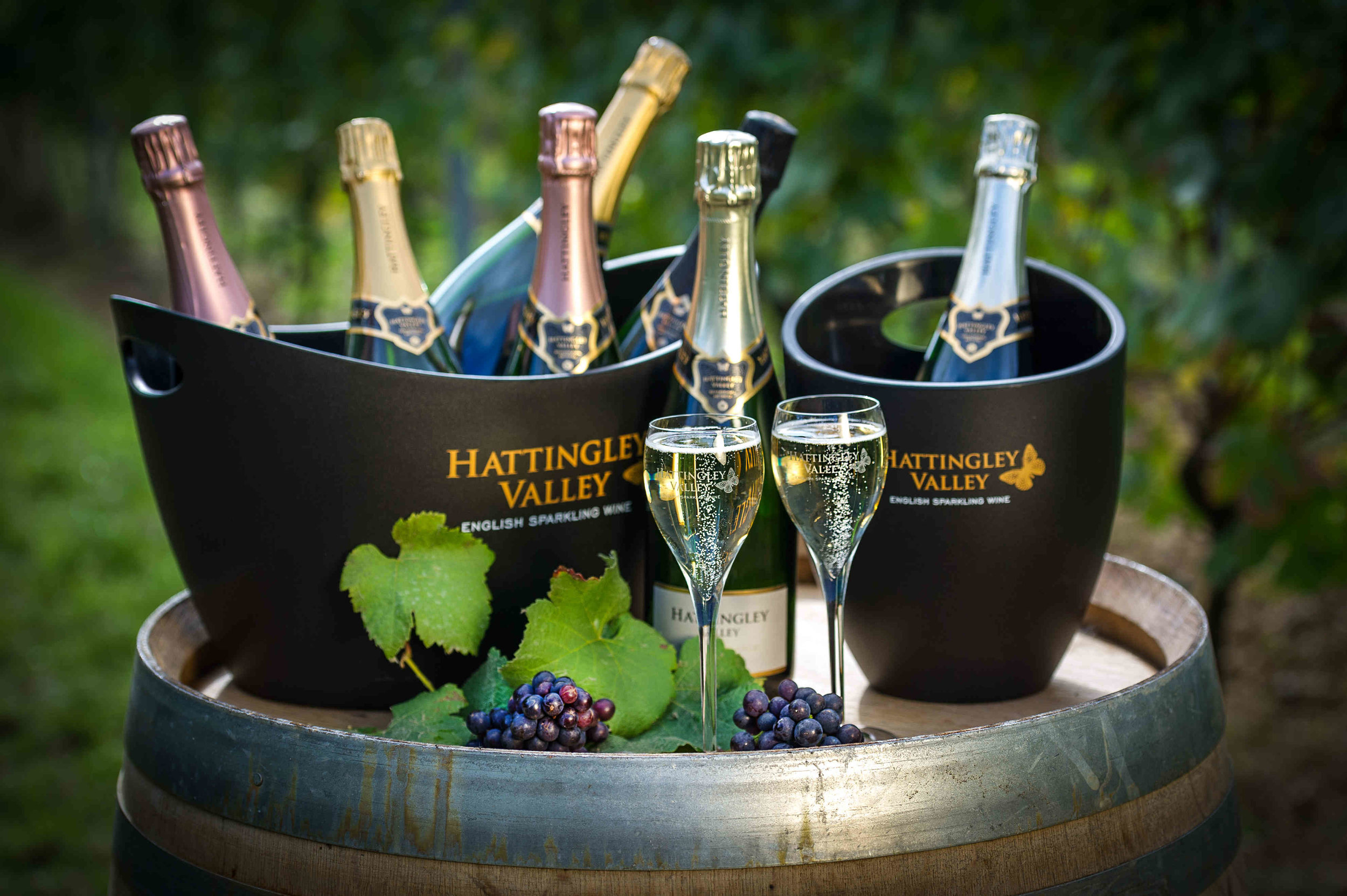 Hattingley Valley_Bottles & fizz in Vineyard_© The Electric Eye Photography.jpeg