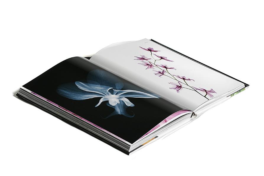 book flowers.jpg