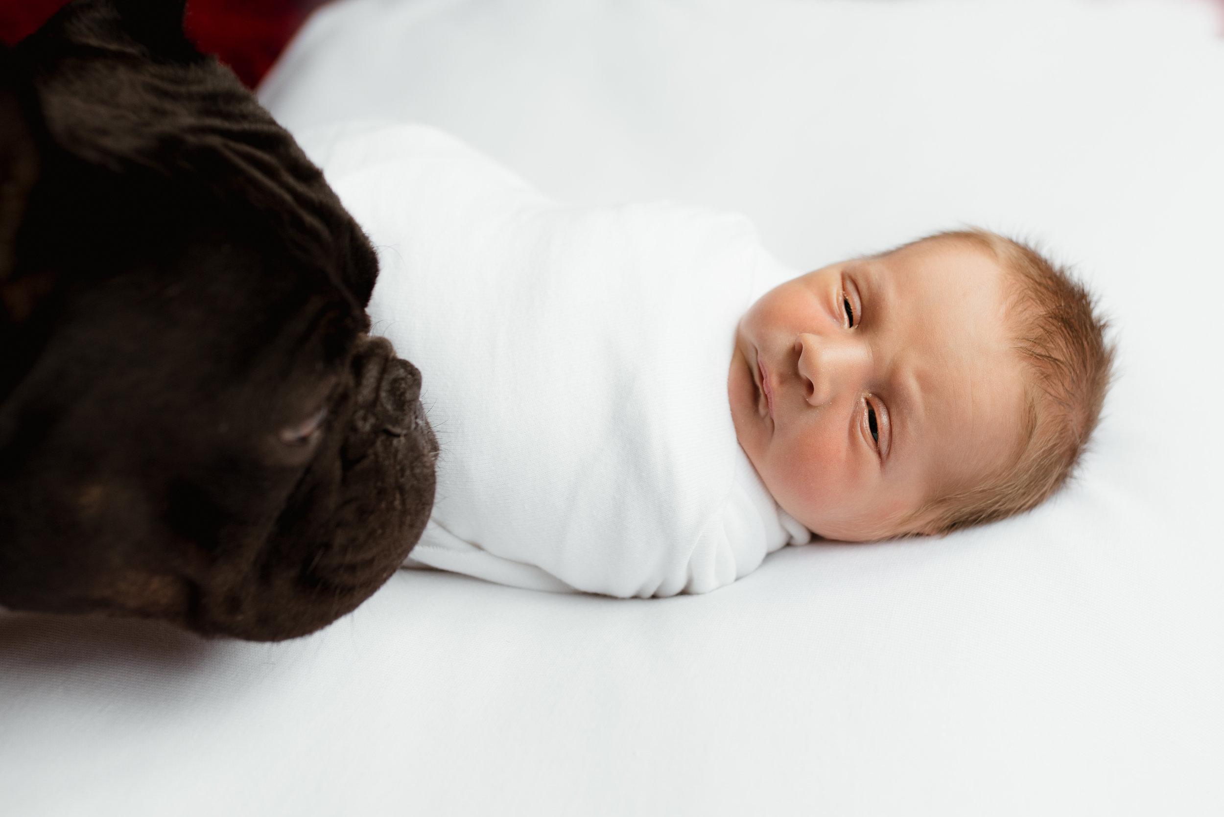 sleepy baby with pet dog