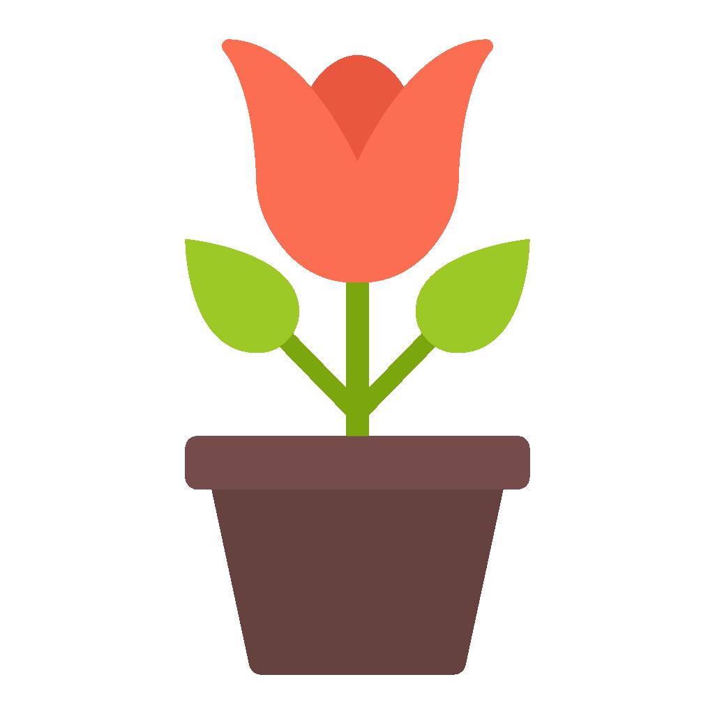 tulip-plant.png
